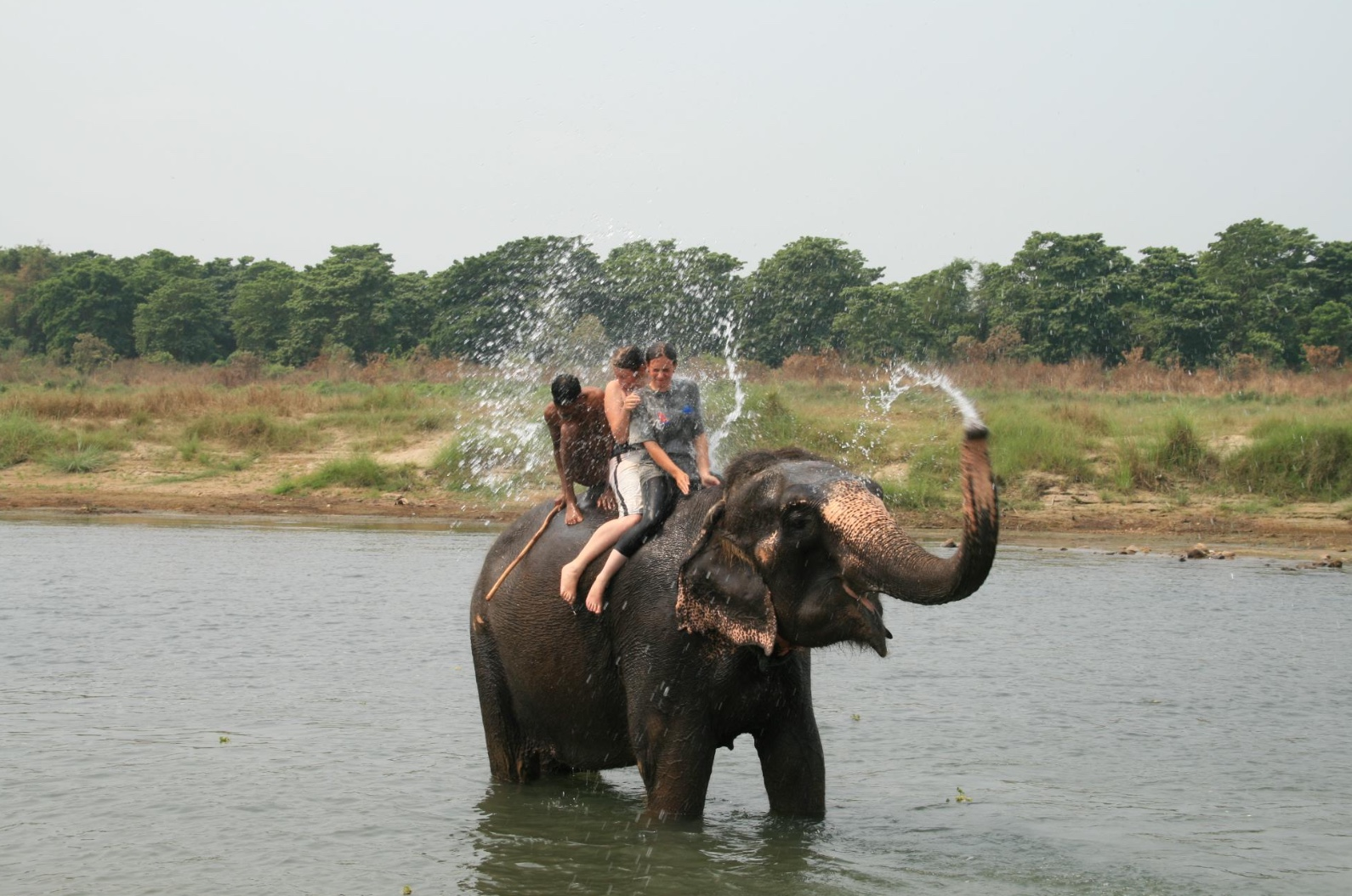 Elephant riding on a gap year in Asia